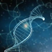 Genome Expression Sequencing